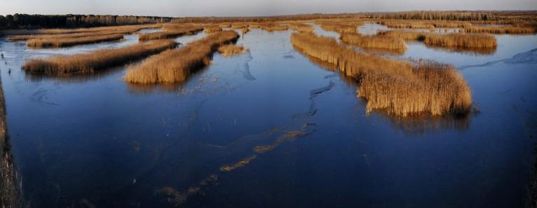 La Laguna di Caorle: un ecosistema da esplorare