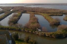 Escursioni in barena – Laguna di Chioggia