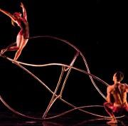 I Momix al Teatro Toniolo di Mestre
